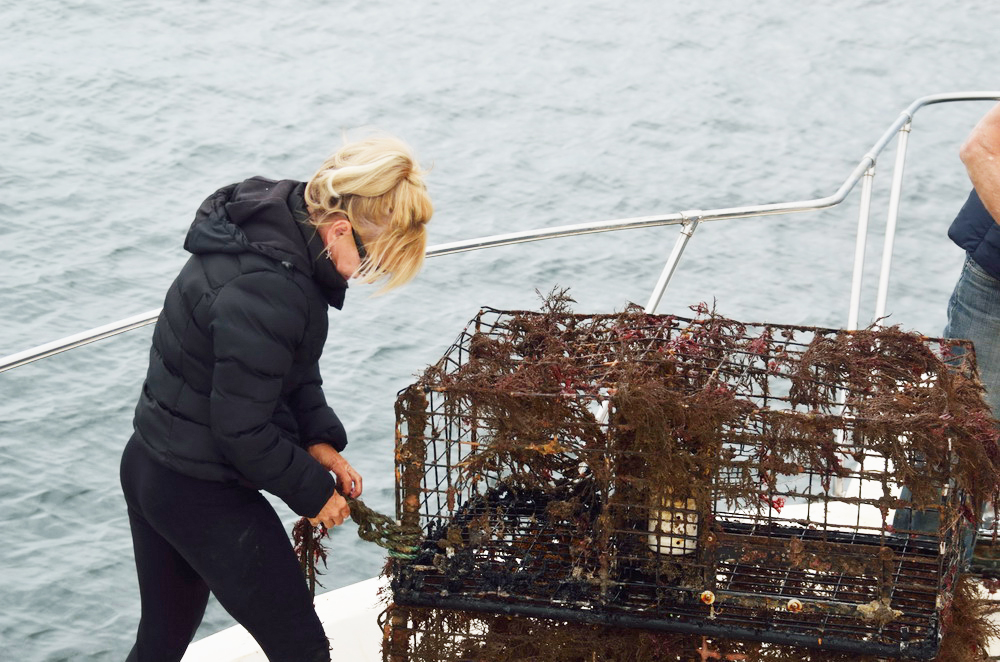 Darlene securing lobster traps
