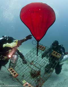 Divers lifting trap