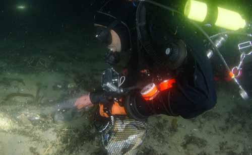 Diver picking up trash