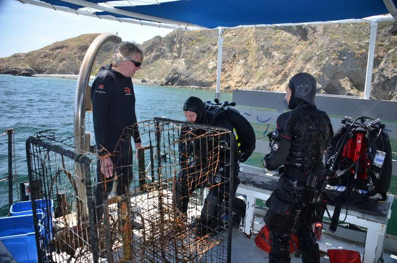 The abandoned lobster trap is safely removed from the sea and is on the boat's deck.