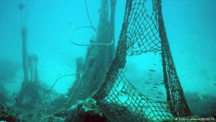 Once lost or set loose, these nets float or settle to the bottom—where they can kill for decades and longer!