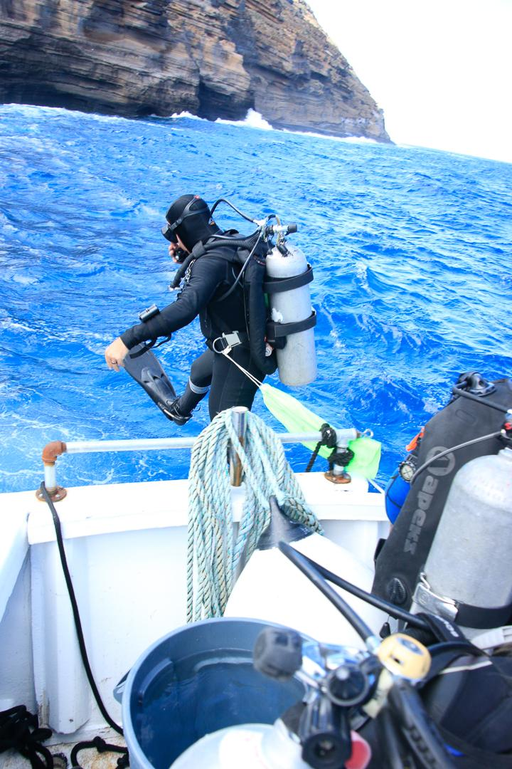 ODA-HI Diver jumping in to remove ghost gear