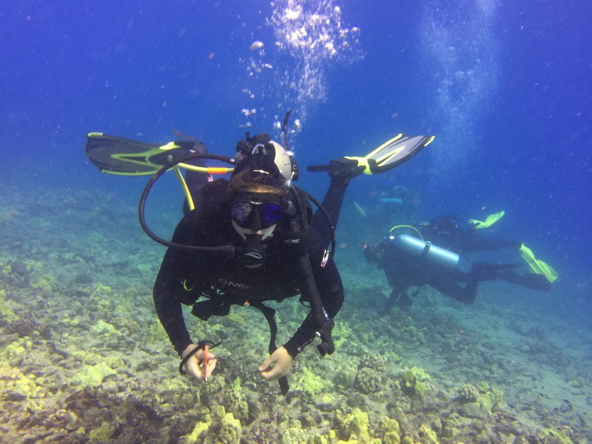 Diver w cutting tool