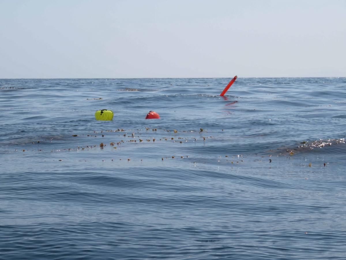 ODA Lift bags pull ocean debris to surface