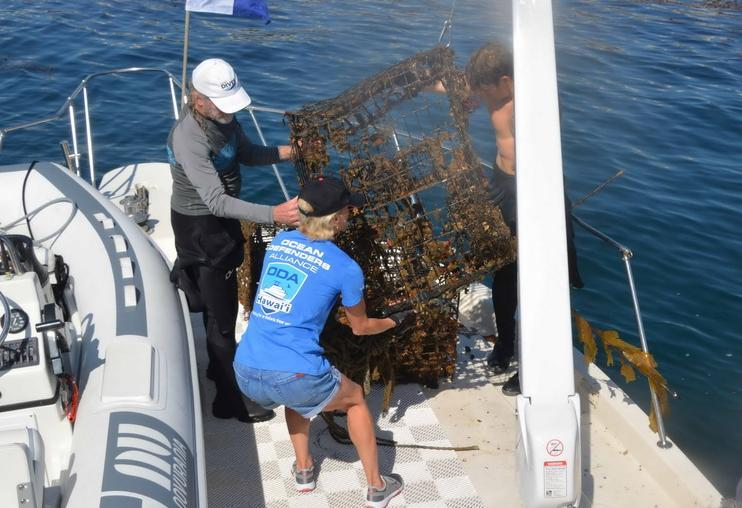 Ocean debris crew with recovered traps